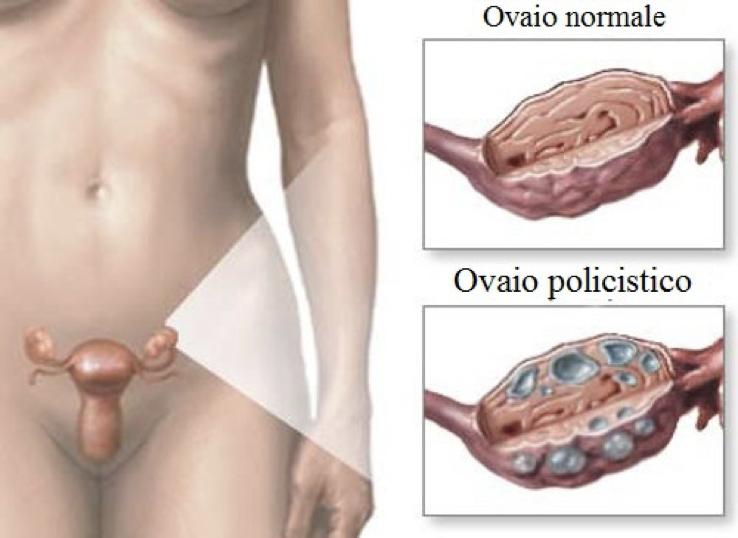 image 1 Dott.ssa Roberta Fratini